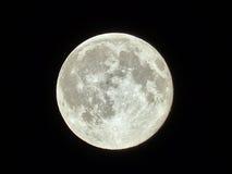 月亮 库存照片