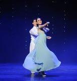 月亮doga华尔兹这奥地利的世界舞蹈的女神 库存照片