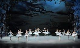 月光夜这天鹅湖芭蕾天鹅湖为时场面  免版税库存照片