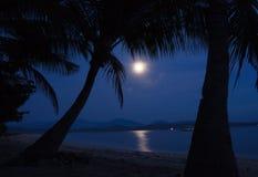 月光水 库存图片