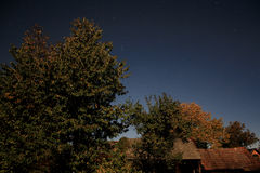 月光的庭院 免版税库存照片