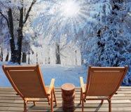 12月冬天太阳 免版税图库摄影