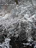 4月冬天 库存照片