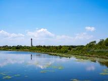 3月和池塘风景,开普梅灯塔,新泽西 库存图片