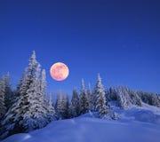 满月在冬天 库存照片