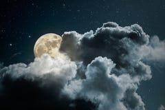 满月夜 免版税库存照片