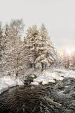 1月太阳 与河的冬天横向 免版税库存照片