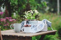 6月或7月与新鲜的被采摘的有机野草莓和春黄菊花的庭院场面 免版税库存图片