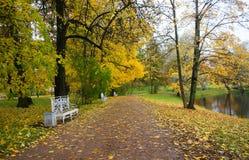 10月早晨在凯瑟琳公园在Tsarskoe Selo 免版税库存图片