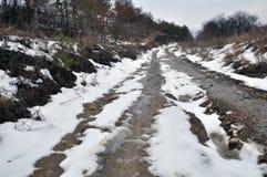 3月春天thaw_3 免版税库存照片