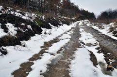 3月春天thaw_4 免版税库存图片
