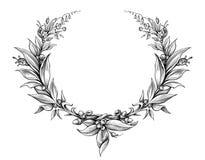 月桂树花圈葡萄酒巴洛克式的框架边界组合图案花卉纹章学盾叶子刻记了花纹身花刺黑白传染媒介 库存例证