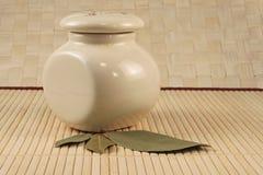月桂树香料 免版税图库摄影