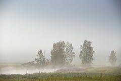 10月秋天领域和草甸 在河的雾 免版税图库摄影