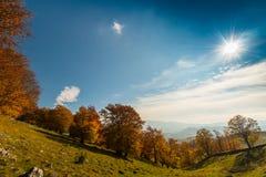 10月秋天风景在遥远的山区在特兰西瓦尼亚 图库摄影