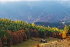 10月秋天风景在遥远的山区在特兰西瓦尼亚 库存照片