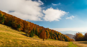 10月秋天风景在遥远的山区在特兰西瓦尼亚 免版税图库摄影
