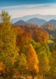 10月秋天风景在遥远的山区在特兰西瓦尼亚 库存图片