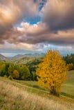 10月秋天风景在遥远的山区在特兰西瓦尼亚 免版税库存图片