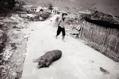 2012年12月第24, Sapa村庄,越南 库存图片