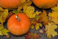 10月自然概念用南瓜、核桃和秋叶 库存图片