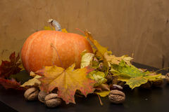 10月自然概念用南瓜、核桃和秋叶 库存照片