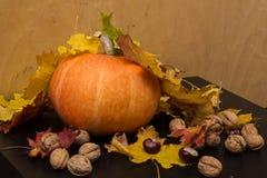 10月自然概念用南瓜、核桃和秋叶 免版税库存图片