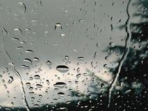 11月雨 免版税库存照片
