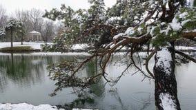 4月雪:多雪的池塘 免版税库存图片