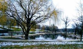 4月雪:多雪的池塘 库存照片