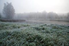 10月霜在一个有雾的早晨 普斯克夫地区,俄国 图库摄影