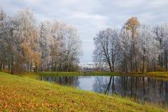 10月霜在Trigorskoye 血污的Pushkinskiye 俄国 免版税库存图片