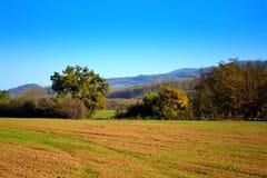11月领域巴尔干视图 库存图片