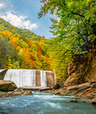 10月颜色和瀑布 免版税图库摄影