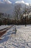 12月结冰的天在公园 库存图片