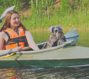 2017年7月15日俄罗斯, Vuoksi河, Losevo -与一mi的一条狗 免版税图库摄影