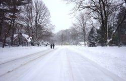 2016年1月23日的snowzilla乔纳斯飞雪雪冬天风暴 免版税库存照片