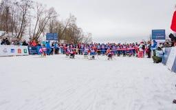 2017年2月11日艺术Veretevo庄园每年滑雪竞赛Nikolov Perevoz 2017年Russialoppet滑雪马拉松 残奥种族 免版税库存图片