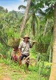 2013年12月31日,印度尼西亚,巴厘岛 2013年12月31日,印度尼西亚 免版税库存照片