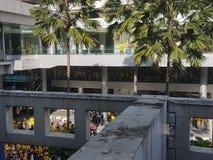 2016年11月19日,吉隆坡Malaysia's Bersih 5集会:抗议者斟酌行动的费用在强制统治下 免版税图库摄影