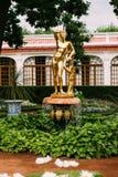 2016年8月05日,圣彼德堡,俄罗斯-金黄雕象喷泉 库存照片