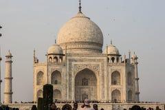 2014年11月02日:泰姬陵的特写镜头在阿格拉,印度 免版税库存图片