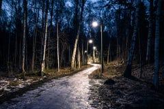 2017年2月11日-结冰的道路在一个森林里在斯德哥尔摩,瑞典 免版税库存图片