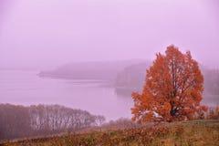 10月黎明 秋天早晨 秋天颜色 红色黎明 库存图片