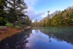 1月Winter树的湖、反射和天空 免版税库存图片