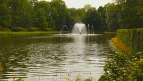 有一个喷泉的池塘在树中 影视素材