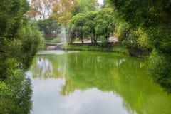 有一个喷泉的湖在庭院里 免版税库存照片