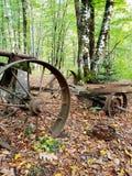 有一个大圆的轮子的一个老生锈的推车在秋天森林里站立 免版税库存图片