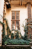 有一个大葡萄酒窗口的美丽的老墙壁 免版税图库摄影