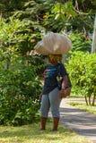 有一个大袋的妇女在头 库存图片